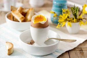 salmonella jajka
